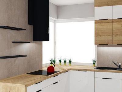 zabudowa kuchenna - projekty 40